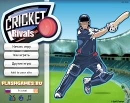 Играем в крикет