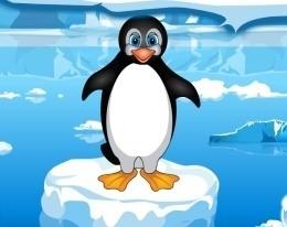 Поход пингвина в гости