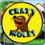Crazy Moles