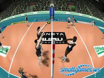 Волейбол 2004