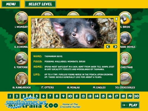 Australia Zoo Quest