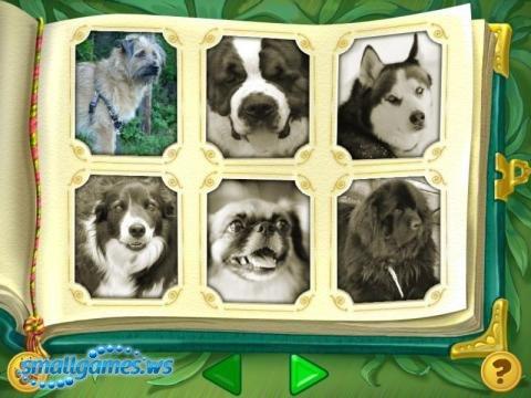Лесси - Жизнь замечательных собак