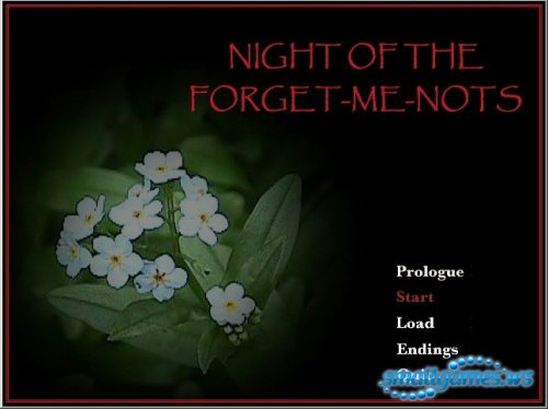 Night of the Forget Me Nots