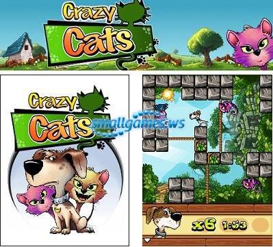 Crazy Cats/Сумасшедшие коты