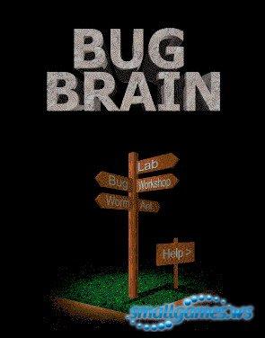 Bug Brain