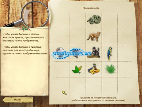 Спасатели животных: Экологическая головоломка