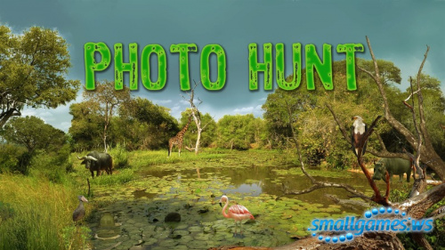 Hidden Animals: Photo Hunt (x64)