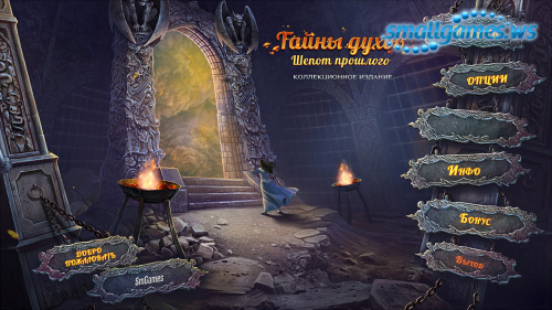 Тайны духов 12: Шёпот прошлого Коллекционное издание