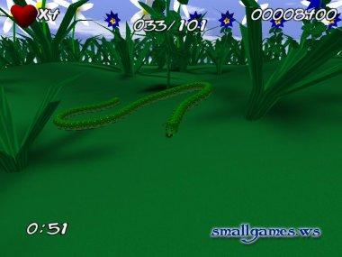 Snake Caterpillars